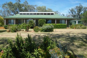 55 Christmas Tree Lane, Quirindi, NSW 2343