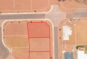7 (Lot 131) Wanari Way, Karlkurla, WA 6430