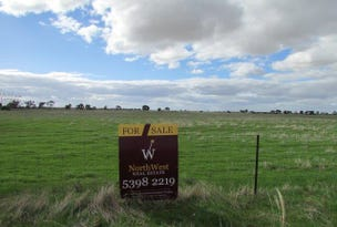Lots 4 & 5 Birchip - Wycheproof Road, Birchip, Vic 3483