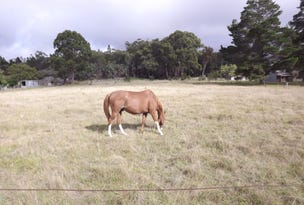 35  FINNIGAN LANE, Torrington, NSW 2371