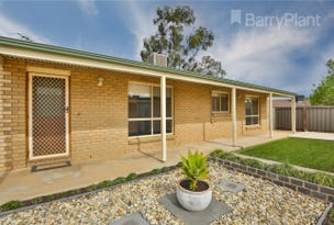 2/12 Caffrey Court, Irymple, Vic 3498