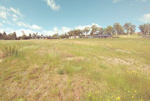3 Ebba Place, Youngtown, Tas 7249