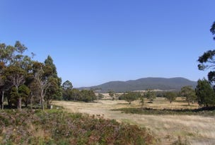 Lot 5 Tasman Highway, Bicheno, Tas 7215