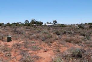 Allotments 10, 11 & 14 Tamblyn Street, Port Augusta West, SA 5700