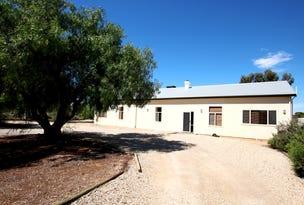418 Old Sturt Highway, Glossop, SA 5344