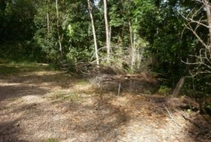 L20 Forest Close, Daintree, Qld 4873