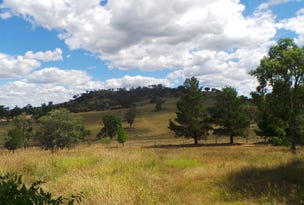 339 box forest road, Uralla, NSW 2358