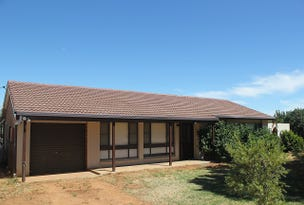 4617  Newell Highway, Peak Hill, NSW 2869