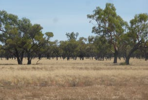 "''Nyngarie & South Comongin"", Quilpie, Qld 4480"