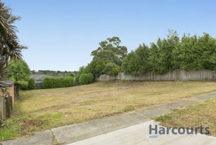 55 Twin Ranges Drive, Warragul, Vic 3820