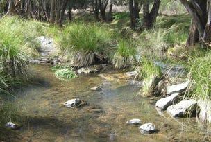 Lot 10 Bungandore Spur Rd, Watsons Creek, NSW 2355