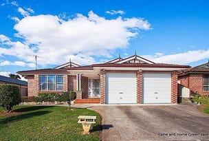 43 Whitford Road, Hinchinbrook, NSW 2168