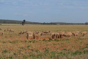 1359 Brobenah, Leeton, NSW 2705