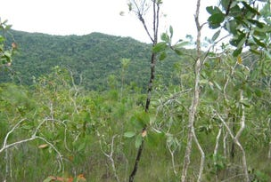 Lot 3 Thornton Peak Drive, Forest Creek, Qld 4873