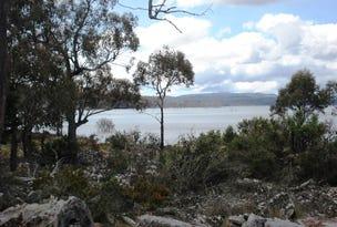 Lot 4 Arthurs Lake Road, Wilburville, Arthurs Lake, Tas 7030
