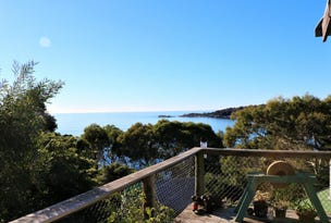 38 Treloggen Drive, Binalong Bay, Tas 7216