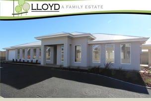 3 Chipp Place, Lloyd, NSW 2650