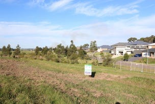 Lot 401 Warden Close, Bolwarra Heights, NSW 2320