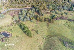 31 Ginns Rd, Lower Wattle Grove, Tas 7109