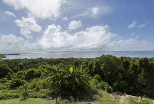 17 Coquette Point Road, Coquette Point, Qld 4860