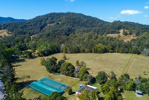 346 Upper Crystal Creek Road, Upper Crystal Creek, NSW 2484