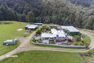 68 Andersons Road, Lower Longley, Tas 7109