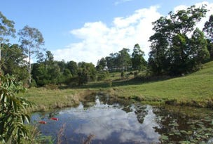 Lot 1-766 Wilson  Road, Congarinni North, NSW 2447