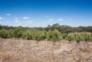 Suzanne Road, Dunedoo, NSW 2844