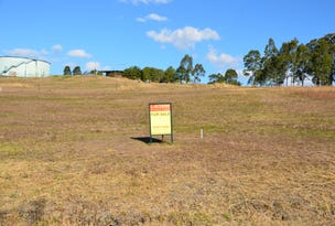 Lot 8 Mountview Avenue, Wingham, NSW 2429