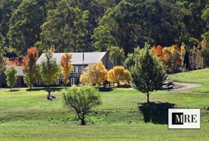 2487 Mt Buller Road, Merrijig, Vic 3723