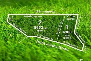 60 Trent Jones Drive, Cape Schanck, Vic 3939