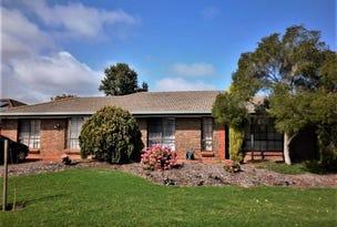 17 Bartlett Drive, Novar Gardens, SA 5040