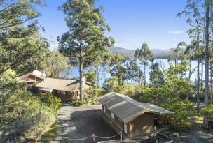 247 Narrows Road, Strathblane, Tas 7109