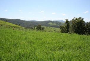 Lot 473 Germons Road, Dungog, NSW 2420