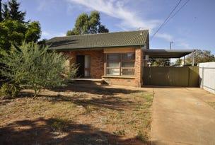 21 Berryman Road, Smithfield Plains, SA 5114