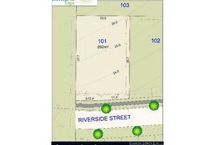 Lot 101 Riverside Street, Bolwarra Heights, NSW 2320
