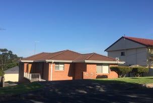 2/45 Billabong Ave, Dapto, NSW 2530