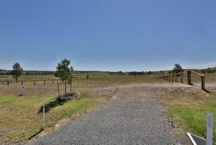 Radford Park - Lot 20 Pyrus Ave (off Elderslie Rd), Branxton, NSW 2335