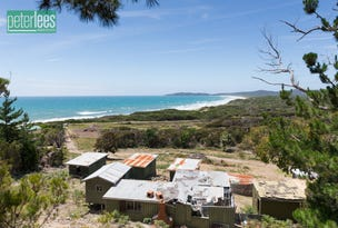 977 Badger Head Road, Badger Head, Tas 7270