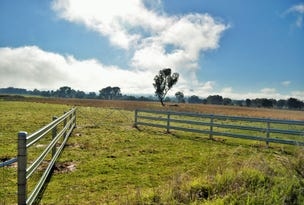 Lot 691 Dights Forest Road, Table Top, NSW 2640