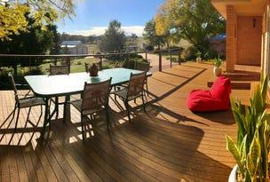 22 Carter Lane, Quirindi, NSW 2343