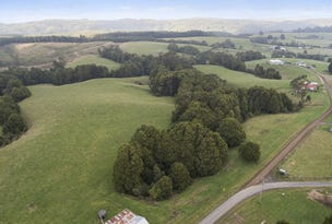 5 Pound Road, Beech Forest, Vic 3237