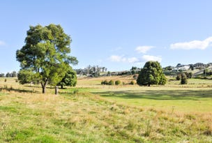 61 West Church Street, Deloraine, Tas 7304