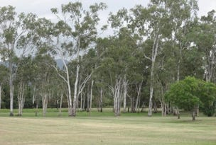 Lot 7, Lot 7, 155 Piralko Road, Mount Surround, Qld 4809