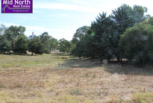 Lot 91, Thomas Street, Saddleworth, SA 5413