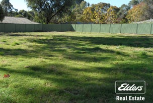 Lot 50 Jollytown Road, Lyndoch, SA 5351