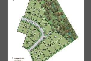 20 Elderberry Avenue, Bentley Park, Qld 4869
