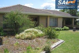 1 Park Terrace, Bordertown, SA 5268