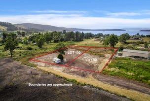 LOT 100 Cemetery Road, Dover, Tas 7117