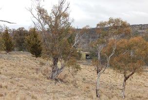 Lot 94 Dry Plains Rd, Dry Plain, NSW 2630